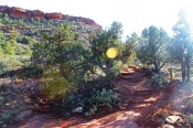Hike Sedona ~ Doe Mountain Trail