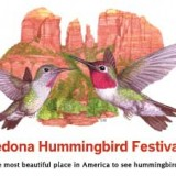 The Sedona Hummingbird Festival